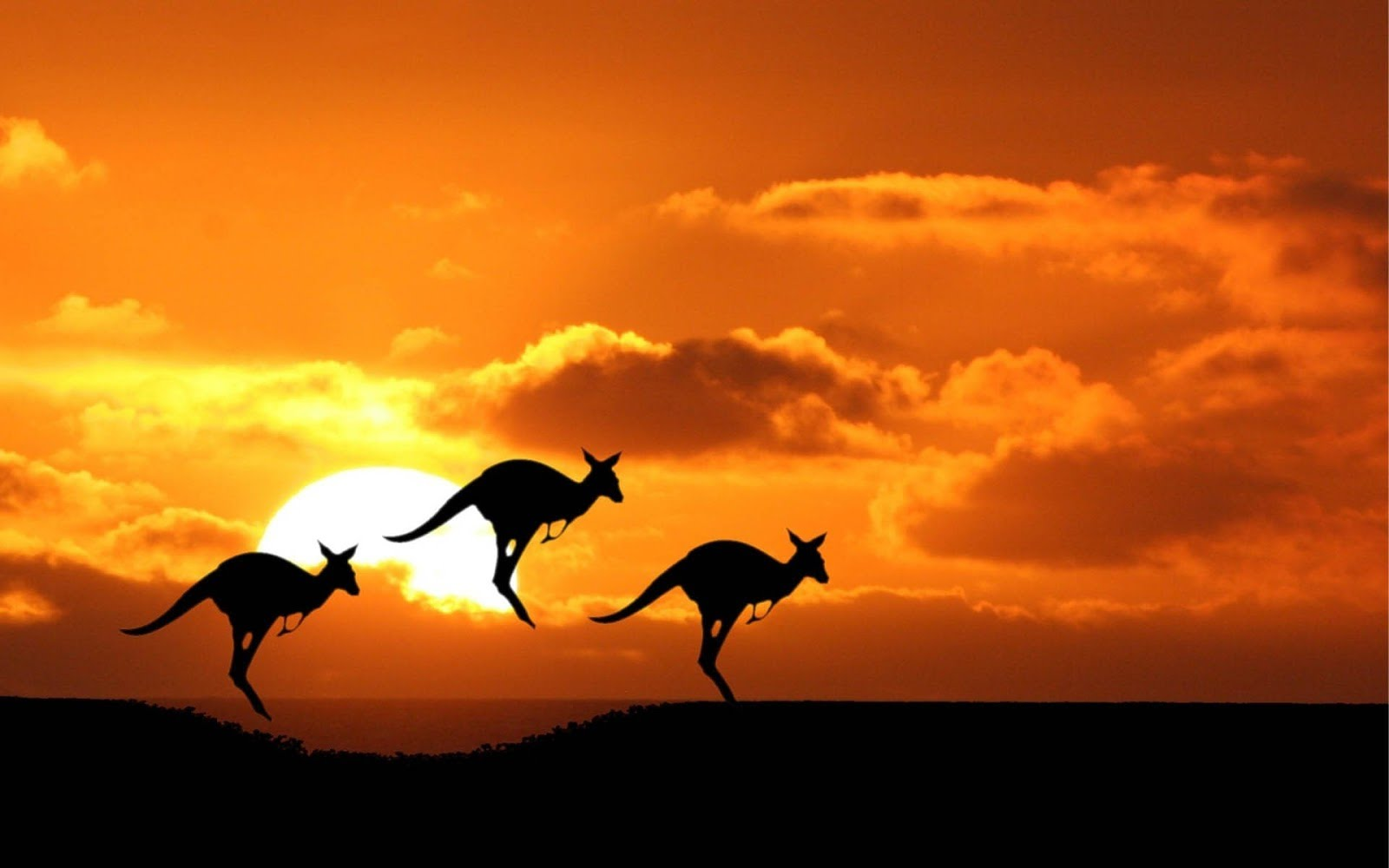 Australia Trio Holiday Travel and Tour Package