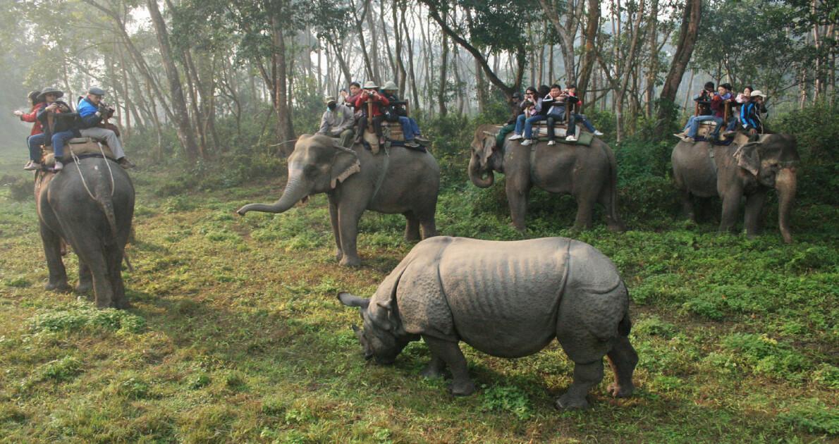 Nepal Safari Holiday Travel & Tour Package