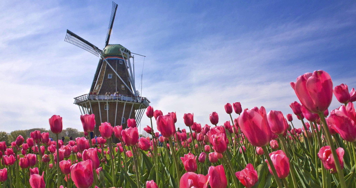Tulip Festival Amsterdam Holiday Travel & Tour Package 2020